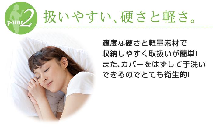 d-sleep_point02-2016