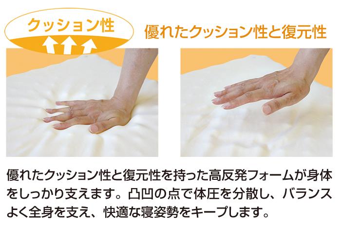 d-sleep_point03c-201